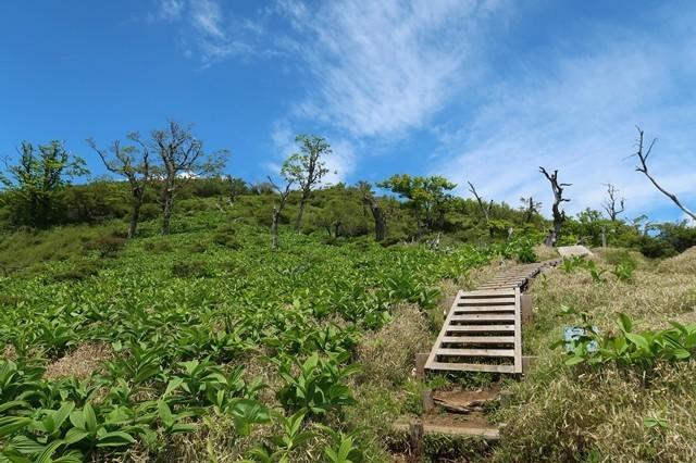 蛭ヶ岳山荘が目の前