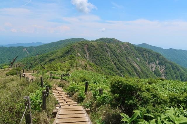 蛭ヶ岳山荘から雰囲気の良い道