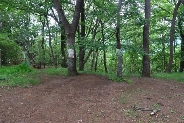 大倉高原山の家のキャンプ場は広く雰囲気も良い