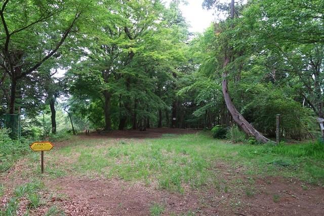 大倉高原山の家のキャンプ場100張り以上テント張れる