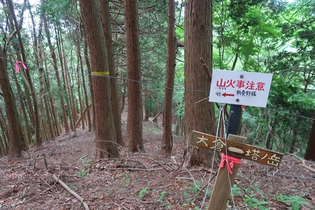 大倉高原山の家キャンプ場大観望ルート