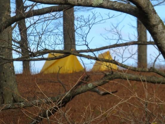 丹沢の山中でテント泊している登山者