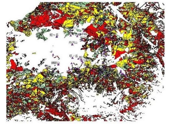 丹沢山塊の植林した地域図