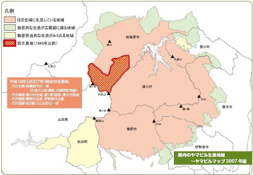 丹沢の山ビルの生息域と活動分布図