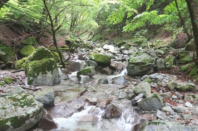 本棚(本棚の滝)までの登山道沢の水が綺麗