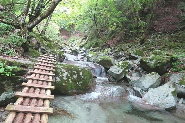 本棚の滝までのルート沢沿いで橋が多い