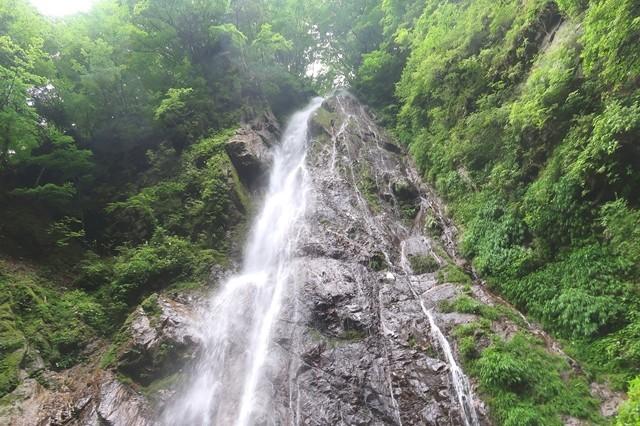 丹沢名瀑の1つ本棚の上部