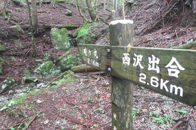 畦ヶ丸と本棚の登山道分岐
