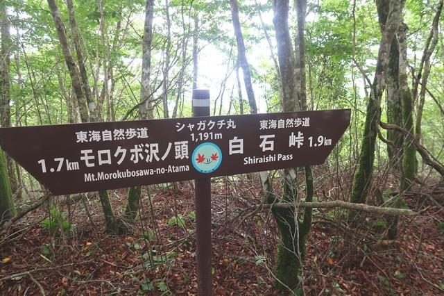 シャガクチ丸の山頂