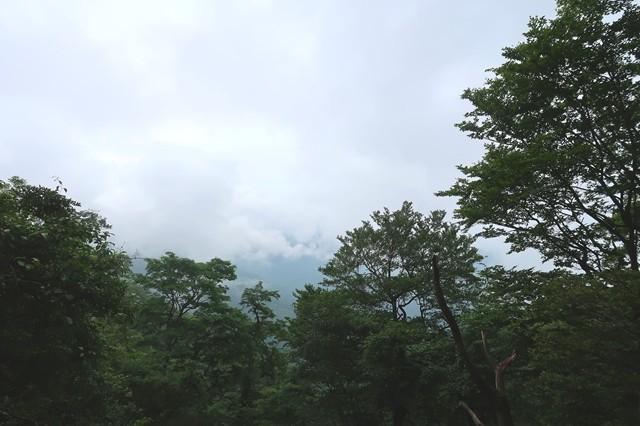 水晶沢ノ頭からの丹沢景色