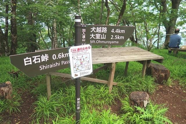 加入道山の標高は、1,418mn