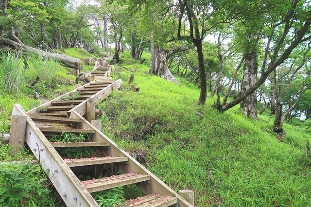 大室山への登山道地味に登り坂