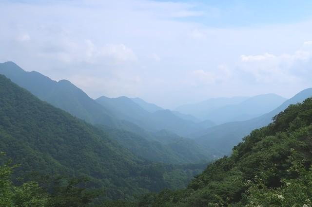 犬越路から西丹沢の展望