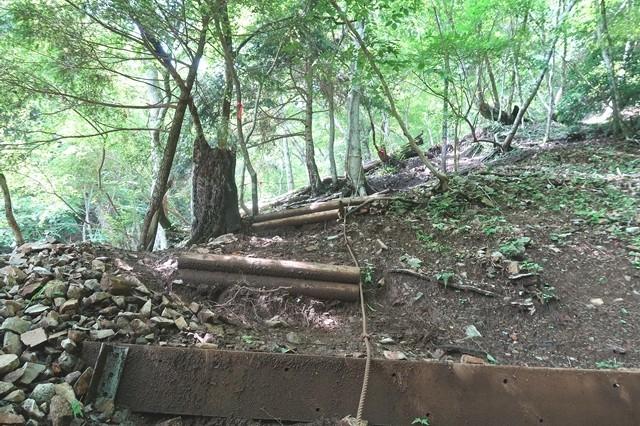 犬越路から用木沢へのルート荒れている