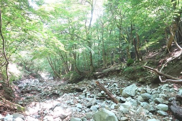 用木沢へのルート転倒、落石に注意