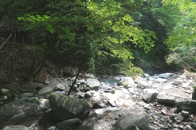 用木沢ルートは水が綺麗で雰囲気が良い