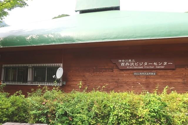 西丹沢ビジターセンターへ下山
