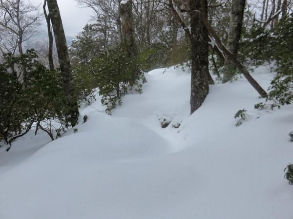 誰にも踏まれていない雪山道歩き