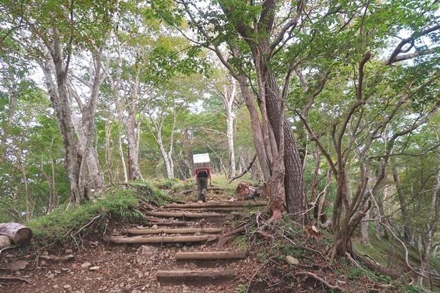 鍋割山荘の歩荷