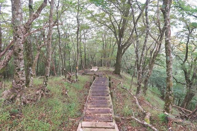 滑る木の階段がある登山ルート