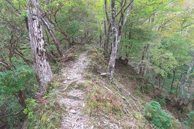 檜岳山稜痩せ尾根ルート