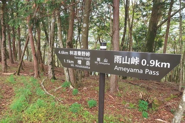 雨山の道標