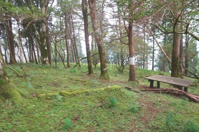 檜岳の山頂のベンチ