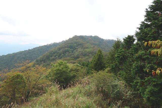 伊勢沢ノ頭登山道から遠望