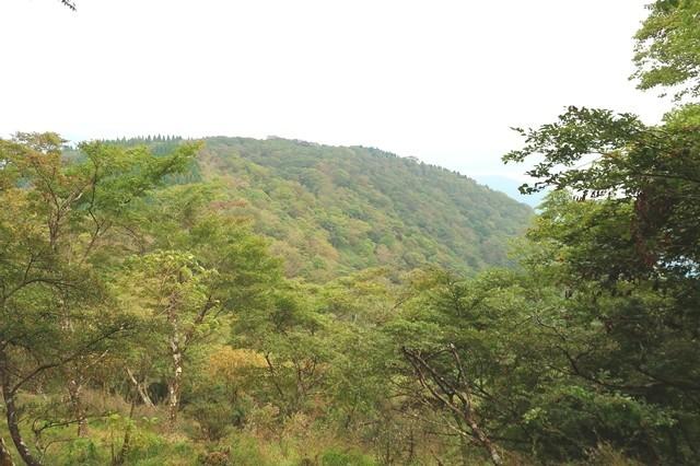 振り返っての檜岳山頂景色