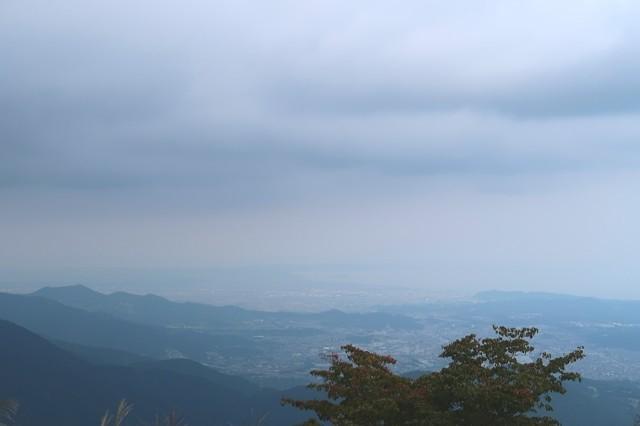 伊勢沢ノ頭周辺からの相模湾方面の景色
