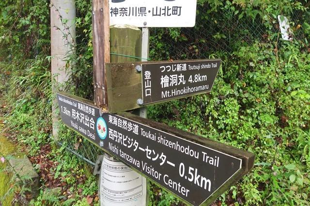 ツツジ新道登山口