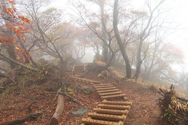 丹沢主稜縦走路の天候の様子