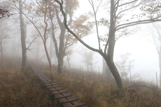 檜洞丸登山天候