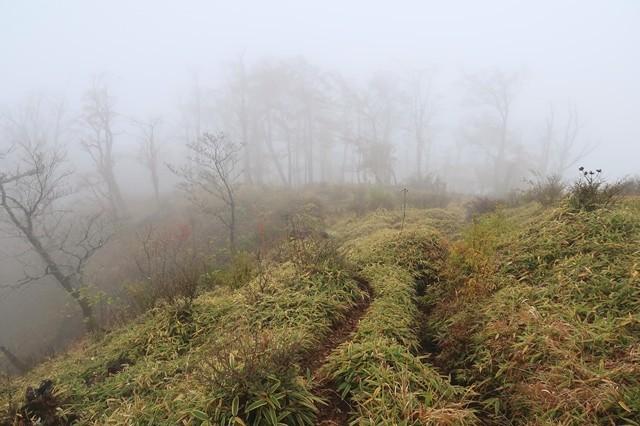蛭ヶ岳を目指して丹沢主稜縦走を再スタート地点
