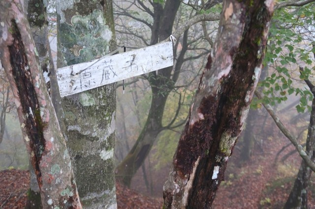 丹沢主稜縦走路源蔵尾根の入口