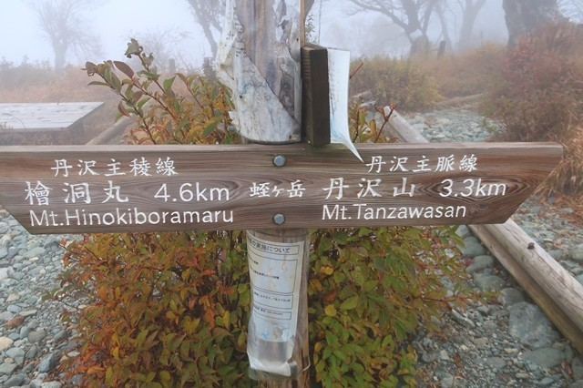 丹沢主稜縦走路と丹沢主脈縦走路の合流地点