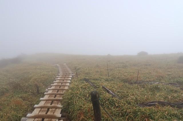 丹沢主脈縦走中の景色