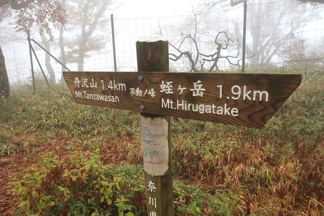 丹沢主脈縦走路の不動ノ峰