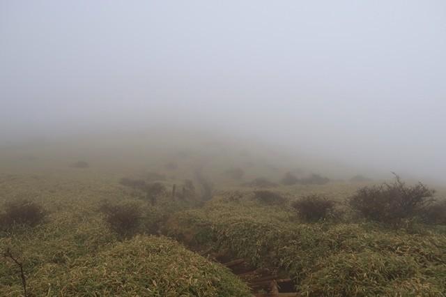 丹沢山登山中の天気