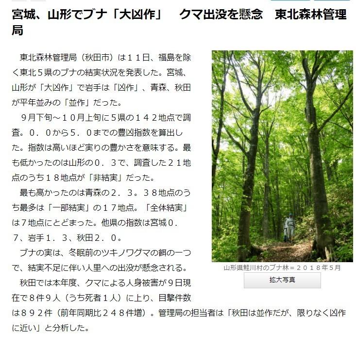 宮城県でクマ出没が多くなった原因木の実の不作
