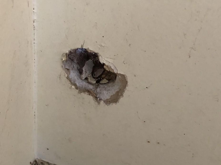 別の壁の穴を補修している様子