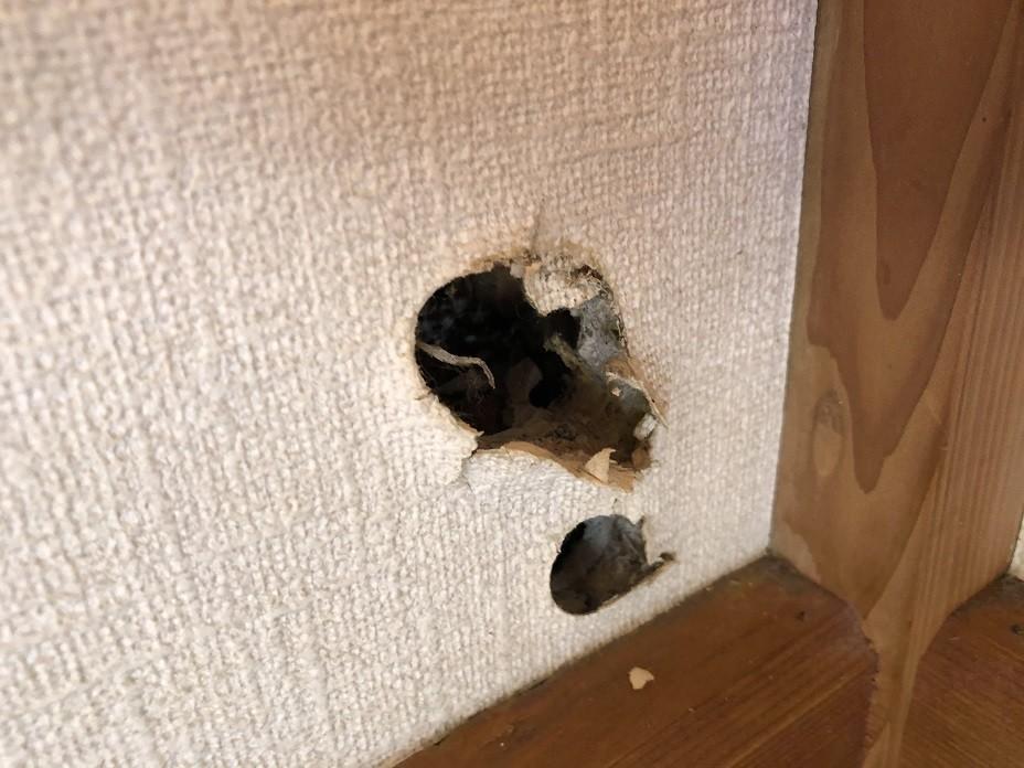 穴を塞ぎたい部屋の壁の穴