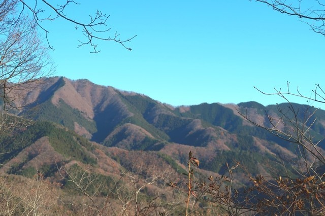 鷹取山から陣馬山の景色