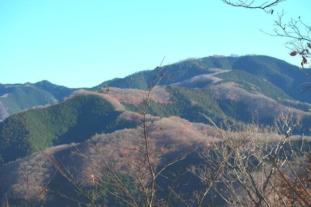 鷹取山か生藤山の景色