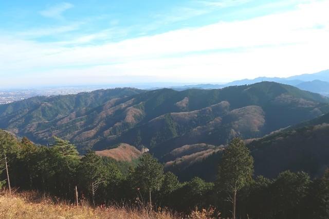 右側が城山、左奥が高尾山景色