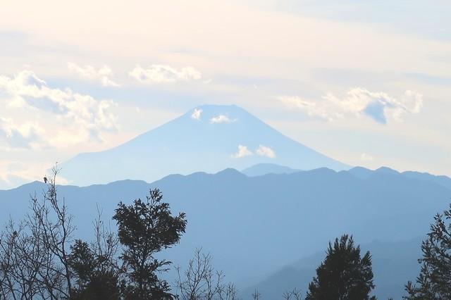 景信山から富士山遠望