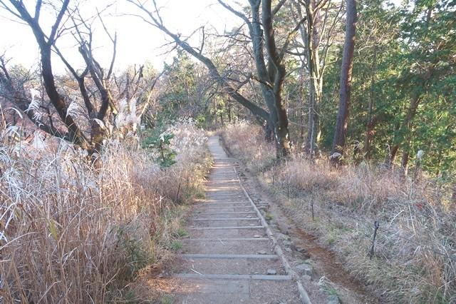 小仏城山から高尾山登山ルート