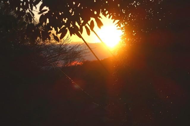 日向薬師の境内で日の出