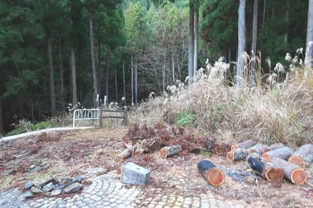 弁天の森キャンプ場