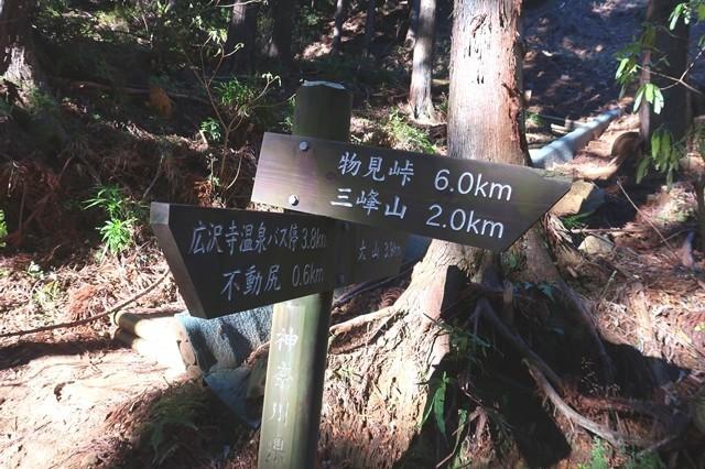 三峰山と大山方面ルートの分岐